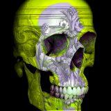 Chris Orr_U-Cranium_2015